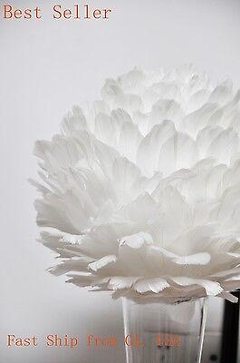 Centerpiece Feather Ball Large Wedding Ball Pompoms Kissing Ball 16 inches White (Feather Ball Centerpieces)