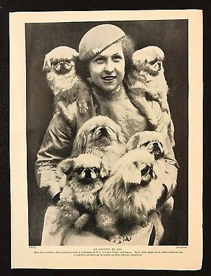 1934 Dog Print / Bookplate - WHITE PEKINGESE & Miss Pam Sutton, Mrs Groad's Dogs