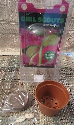NEW! I LOVE GIRL SCOUTS MESSAGE BEAN LIMA BEAN PLANT CRAFT EXPIRED 04/2015 - Lima Bean Plants