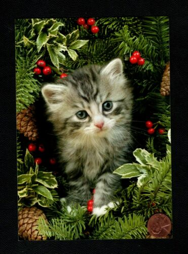 CHRISTMAS Cat Kitten Gray Tabby Pinecone Tree Branches Greeting Card W/ TRACKING