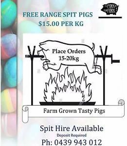 Spit pigs $15 kilo Dundowran Fraser Coast Preview