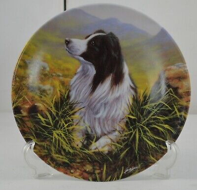 - DANBURY MINT PLATE ENTITLED THE BORDER COLLIE COLLECTION - HIGHLAND SCOUT