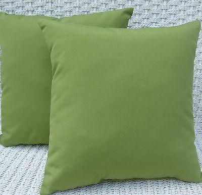 2 Pack ~ Kiwi Green  Decorative Indoor Outdoor Throw Toss Pi