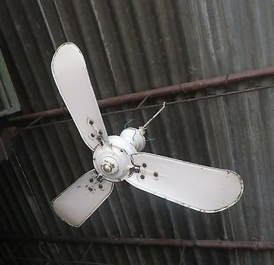 "Antique Ceiling Fan Marelli Italy Mark Eng.Electric Co 3 blade AC 36""TypeA"