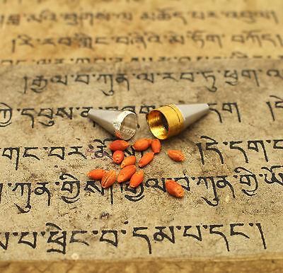 Blessed Tibetan Buddhist Nechung Dalai Lama Oracle Prevent DEATH Amulet Pendant