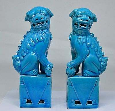Pair Chinese Turquoise Blue Porcelain Foo Dogs ~ 7'' Tall ~