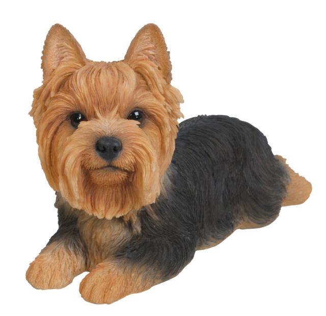 Vivid Arts - PET PALS PUPPY DOG & KENNEL BOX - Yorkie Yorkshire Terrier