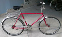 CCM Galaxie Bicycle - Vintage Cruiser