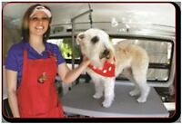 Mobile Pet Grooming Franchise – Not Sexy - Very Profitable