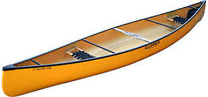 Wanted Aluminum or Kevlar canoe for family outings