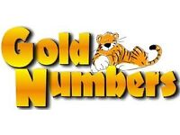 Gold Numbers for Sale 0757 * 2 2 3 4 5 6