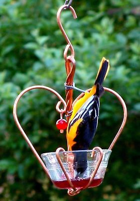Songbird Essentials Love Birds Jelly Bird Feeder