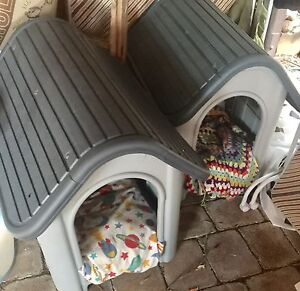 Dog kennels Mount Nelson Hobart City Preview