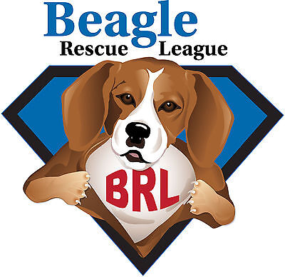 Beagle Rescue League, Inc.