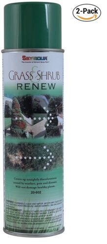 Seymour 20-602 Grass and Shrub Renew Paint, Pristine Green, 2/Pack