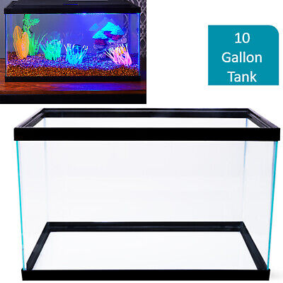 10 Gallon Glass Aquarium (10 Gallon Fish Tank Aquarium Clear Glass Terrarium Pet Aqua Home Reptiles Fishes )