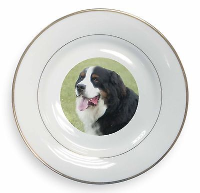 Bernese Mountain Dog Gold Rim Plate in Gift Box Christmas Present, AD-BER1PL
