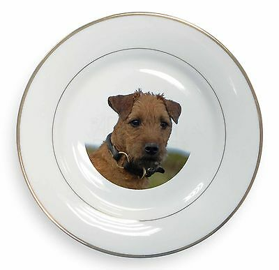 Lakeland Terrier Dog Gold Rim Plate in Gift Box Christmas Present, AD-LT1PL