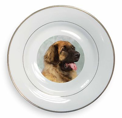 Blonde Leonberger Dog Gold Rim Plate in Gift Box Christmas Present, AD-LE1PL