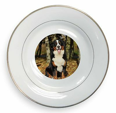 Bernese Mountain Dog Gold Rim Plate in Gift Box Christmas Present, AD-BER7PL