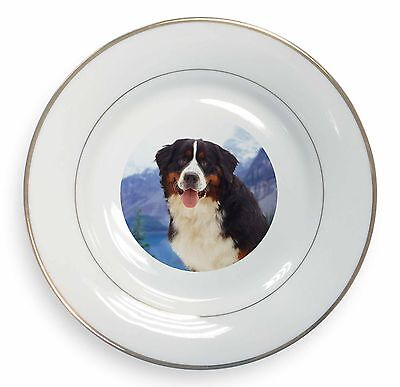Bernese Mountain Dog Gold Rim Plate in Gift Box Christmas Present, AD-BER6PL