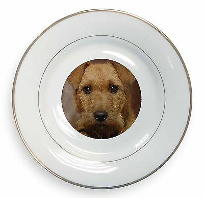 Lakeland Terrier Dog Gold Rim Plate in Gift Box Christmas Present, AD-LT2PL