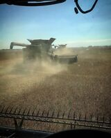 Looking For Operator For Upcoming Harvest