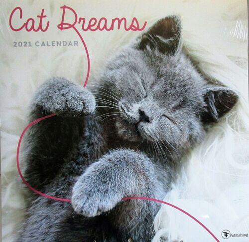 "2021 Wall Calendar CAT DREAMS  {12"" x 24 When Opened}"
