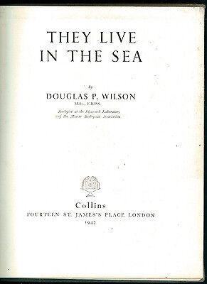 WILSON DOUGLAS P. THEY LIVE IN THE SEA COLLINS 1947 I° EDIZ. ANIMALI PESCI