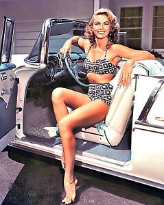 1950-1959 DOROTHY MALONE color period glamour photo (Celebrities & Musicians)
