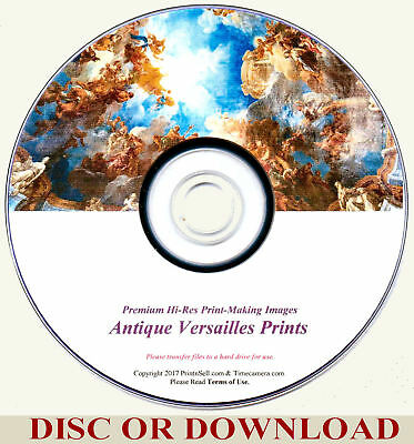 Make Sell Restored Antique Versailles Prints - High Res Images By Timecamera