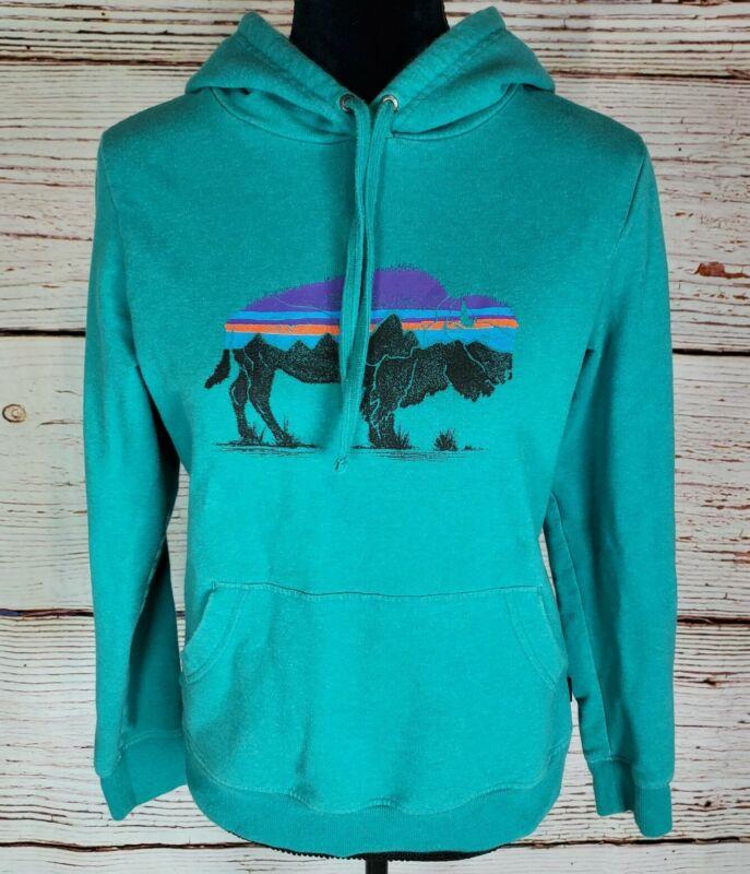 Patagonia Hoodie Womens Small Teal Green Buffalo Organic Cotton Pullover Shirt