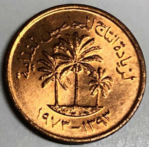 # C010   UNITED  ARAB  EMIRATES   COIN,    ONE  FILS   1973  Unc.