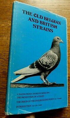 Origin of The Racing Pigeon & Old Belgian / British Strains, Racing Pigeon Doubl