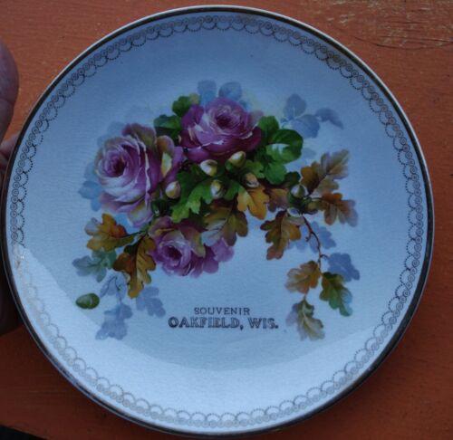 Antique Oakfield Wisconsin Souvenir Plate