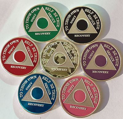 Custom Color Year 1 - 65 Silver Plated AA Medallion Sobriety Chip Coin Token