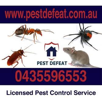 Cheap Pest Control @ Pest Defeat Brisbane