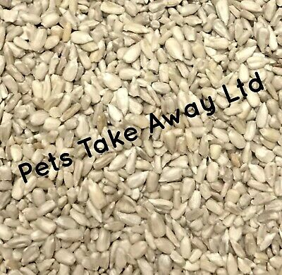 Bakery Grade Quality Sunflower Hearts Kernels Wild Bird Seed 22.6kg BIG BULK BUY
