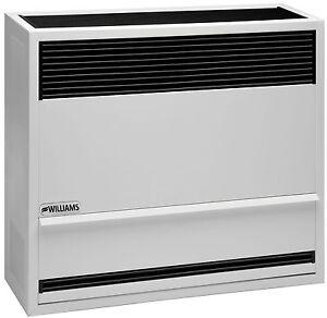 Williams 3003821 30,000 BTU Direct Vent Wall Furnace Heater Propane LP In Stock