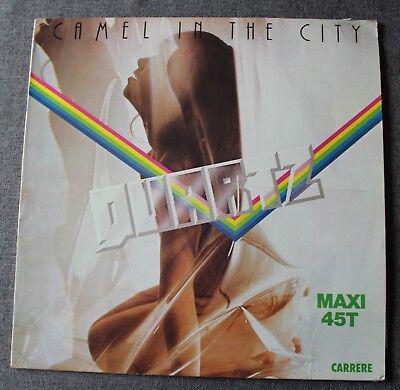 Quartz, camel in the city / walking on the floor , Maxi Vinyl  (Camel Vinyl Flooring)