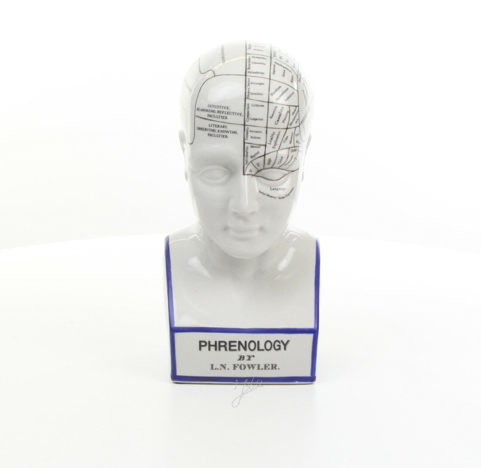Deko Kopf Kopfskulptur Büste Phrenologie Schädellehre Medizin Porzellan 30 cm