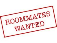 2 ROOMMATES WANTED FOR STUDENT HOUSE IN HOLYLANDS