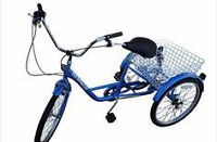 Adult 6 speed Tricycle