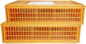 Chicken ,poultry  transport crates