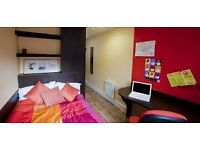 IQ Grove Student Accommodation Single Room Replacement tenant wanted