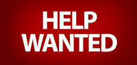 Mover Helper Wanted
