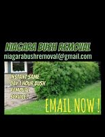 Tree Removal Same Day INSTANT SERVICES Niagara Region