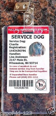 2 Vertical ADA ID Badge Plastic Holder Metal Clip Bus Pass ID Card School Dog