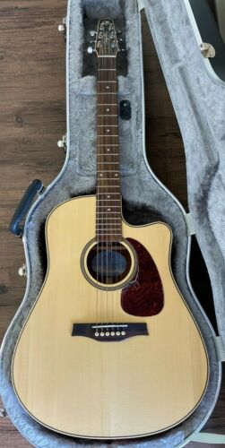 SEAGULL SWS MARITIME ACOUSTIC GUTAR WITH HARD SHELL CASE