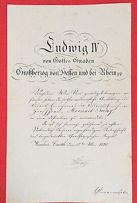 Bestallungsurkunde LUDWIG IV. VON HESSEN DARMSTADT, Windsor Castle 17.05.1880!